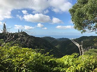 Wiliwilinui Trail 2