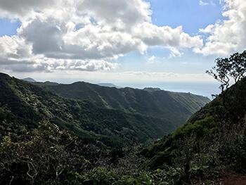 Wiliwilinui Trail 4