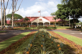 Tackling Oahu on a Budget 3
