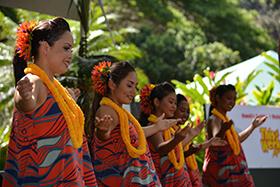 Summer Concerts on Oahu 2