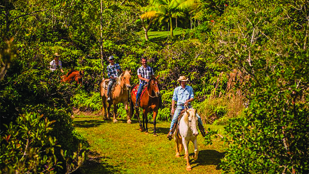 Silver Falls Ranch Trail Ride