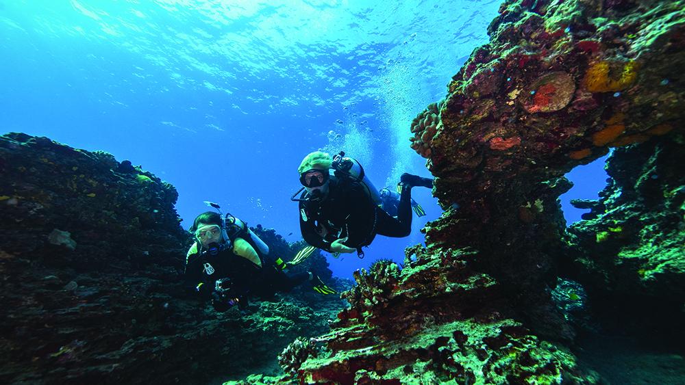 Dive Oahu 01