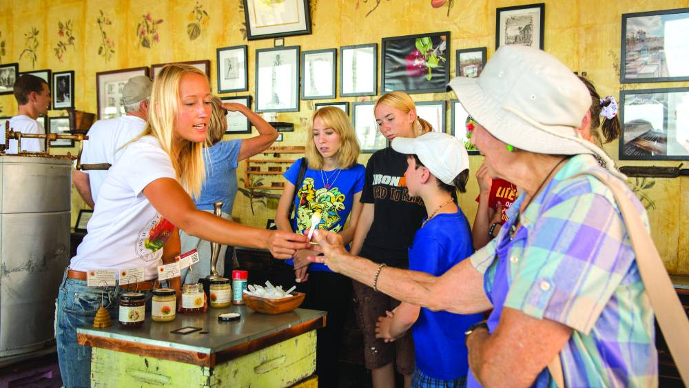 Catch the buzz at Big Island Bees