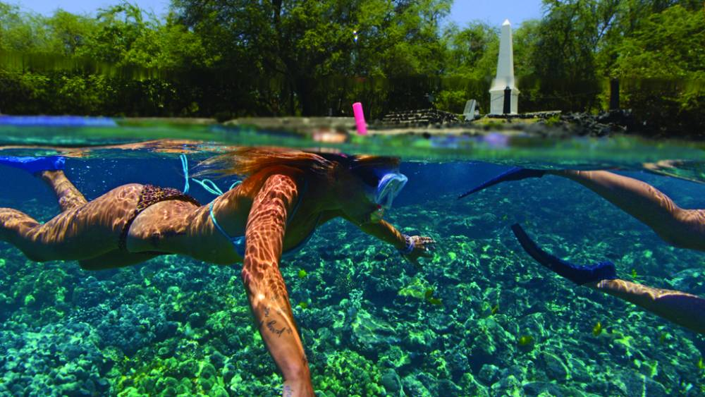 Discover a magnificent underwater world at Kealakekua Bay with Fair