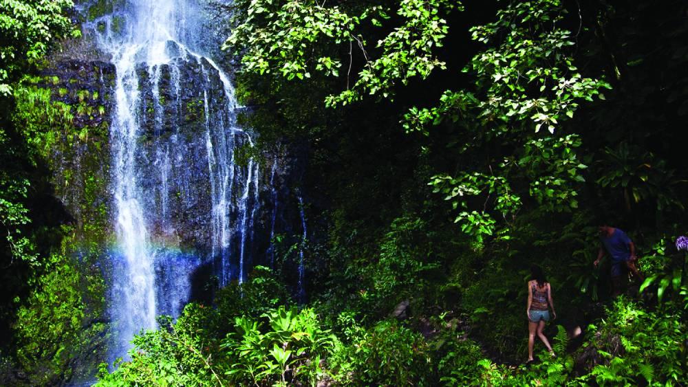 Hana Waterfall (Tor Johnson)
