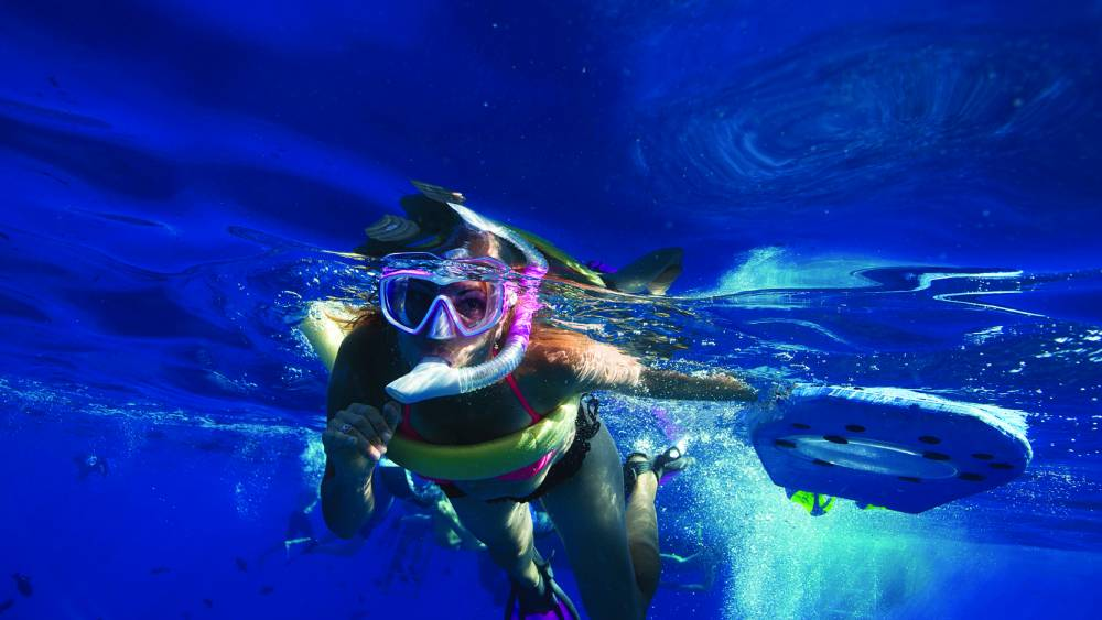 Snorkeling with PacWhale Eco-Adventures