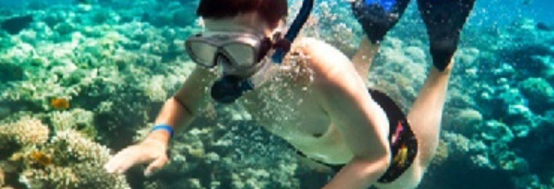 Lahaina Cruise Company Lanai Dolphin Snorkel Experience