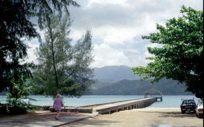 Hanalei Beach Park - Kauai