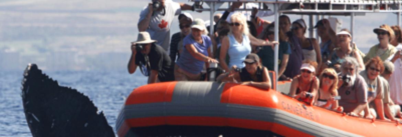 Capt. Steve's Rafting Adventures
