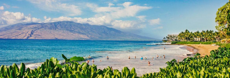 Maui Discount Activities
