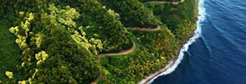 Roberts Hawaii Heavenly Hana Tour