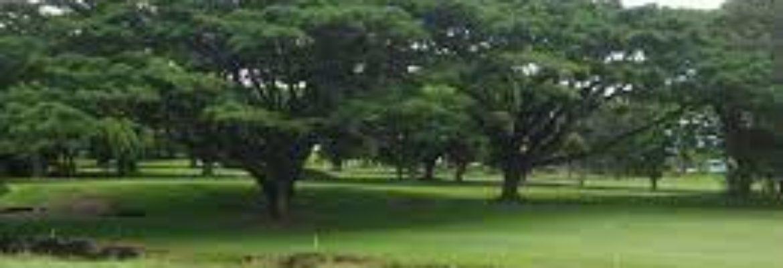 Hilo Municipal Golf Course