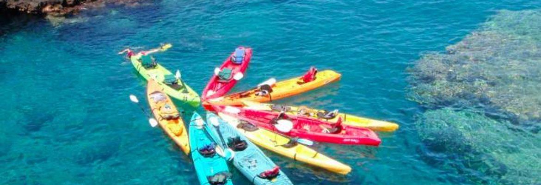 Ocean Safari Kayak Adventures