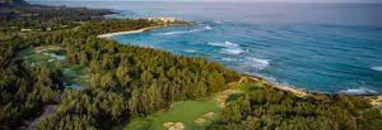 Turtle Bay Golf – Palmer